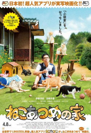 Watch Cat Collection's House (Neko Atsume House) online