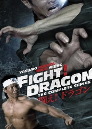 Fight! Dragon