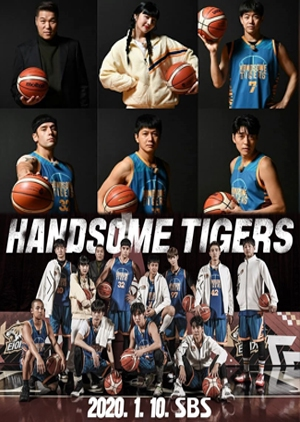 Handsome Tigers
