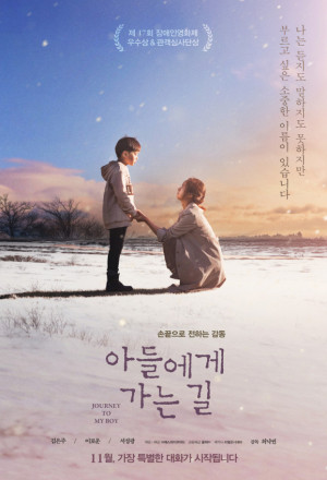 Journey to my boy (2017)