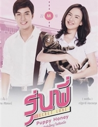 Senior Secret Love: Puppy Honey (2016)