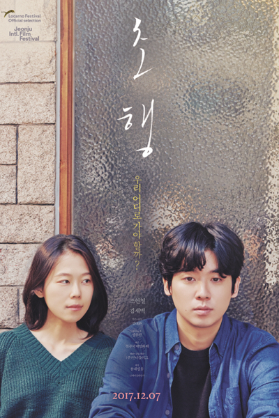 The First Lap (2017)