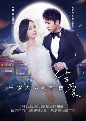 Watch The Love Knot: His Excellency's First Love online