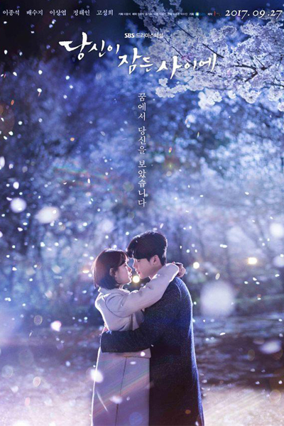 While You Were Sleeping (2017)