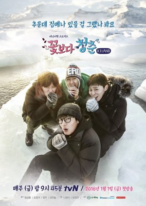 Youth Over Flowers: Iceland